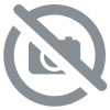Kit Raptor teintable